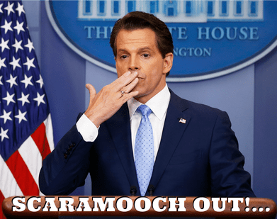 I just came back from Vacation and Missed the ENTIRETY of Scaramucci's Career